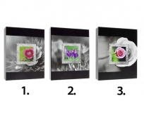 Gedeon 10X15/200 Frame fotóalbum
